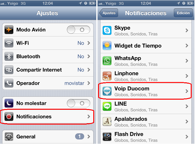 voip iphone